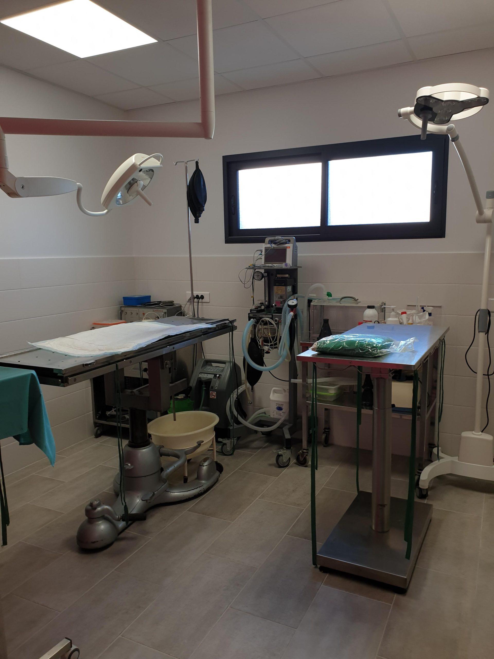 chirurgie clinique vétérinaire